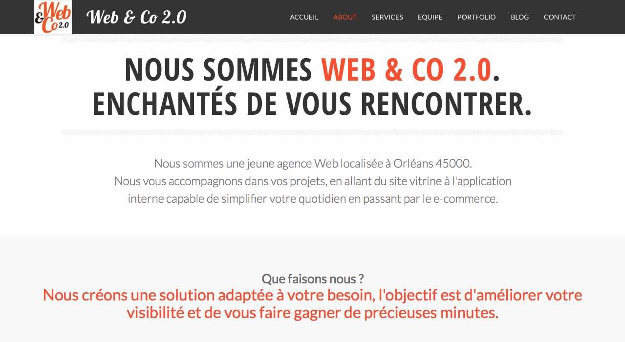 Site Web WEb & Co 2.0